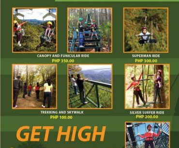 Feel the Thrill at Tree Top Adventure